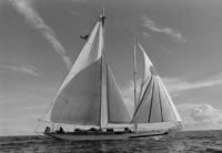 Feathered Serpent II sailing